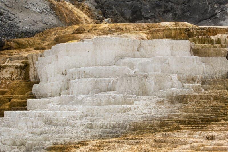 Chaude, la roche de carbonate a appelé des terrasses de formes de travertin dans Yellowst image stock