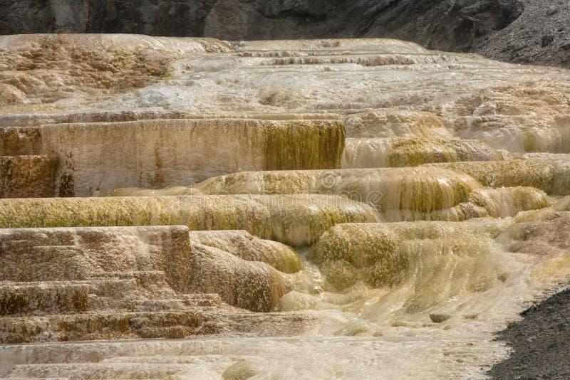 Chaude, la roche de carbonate a appelé des terrasses de formes de travertin dans Yellowst photographie stock