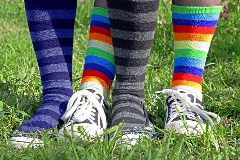 Chaussettes colorées de genou photo stock
