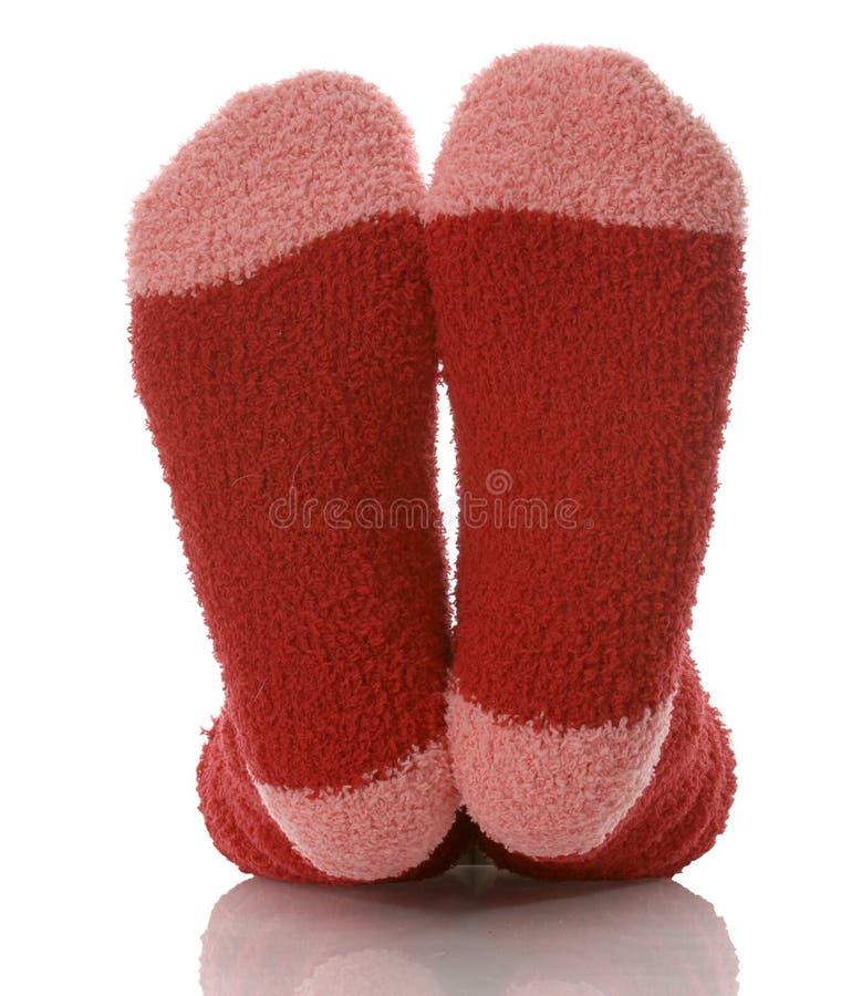 Chaussettes de femme photo stock