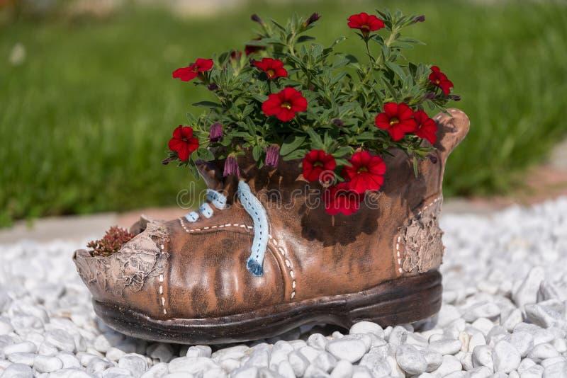 Chaussure avec des fleurs photographie stock libre de droits