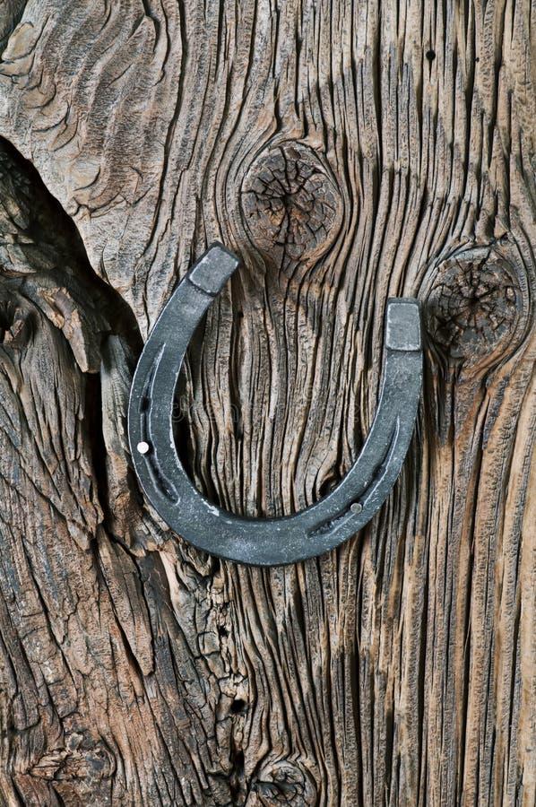 Chaussure de cheval image libre de droits