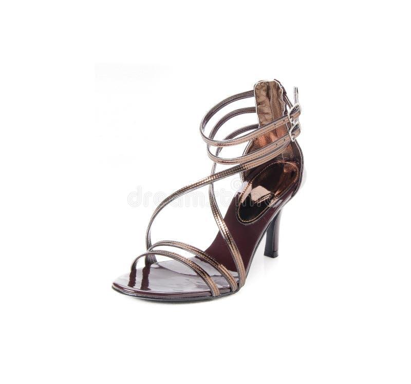 chaussure chaussure de femme sur un fond photo libre de droits