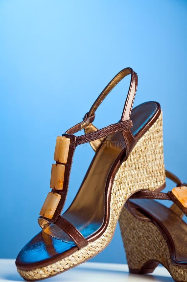Chaussure de femmes images stock