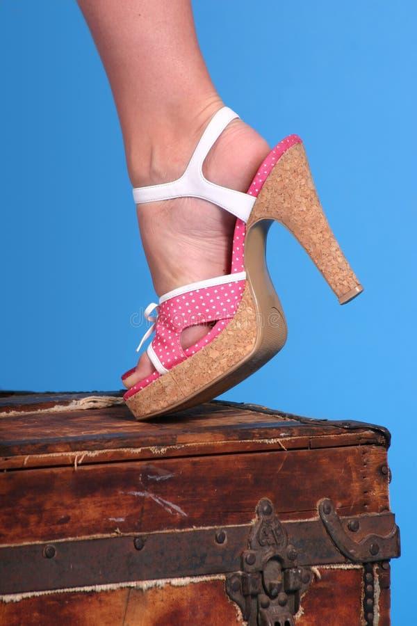 Chaussure de Polkadot photo libre de droits