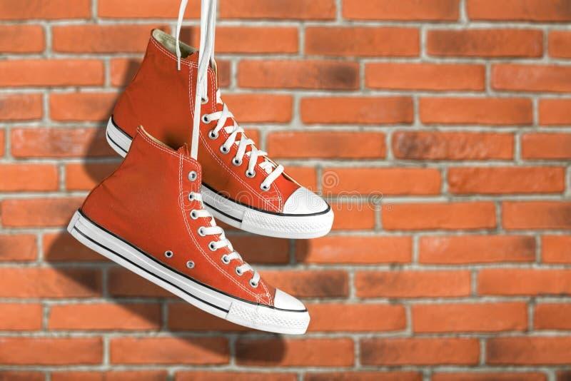 Chaussure de toile image libre de droits