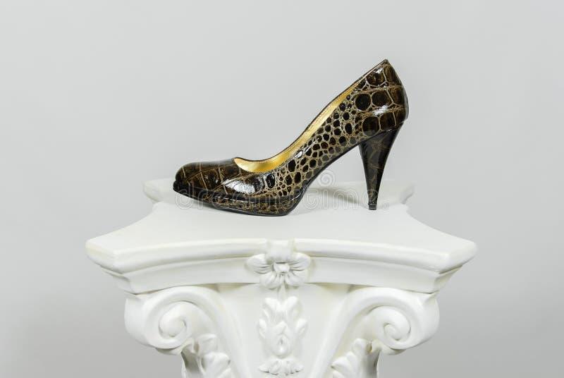 Chaussure en cuir de serpent brun à talons hauts femelle élégant sur la colonne grecque photos stock