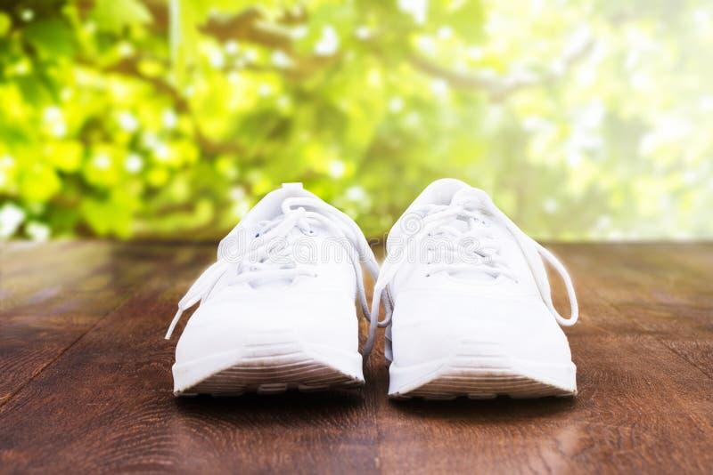 Chaussure sur le plancher en bois photo libre de droits