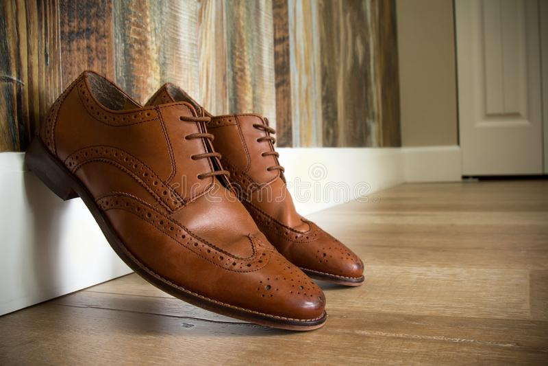 Chaussures élégantes de Brown images libres de droits