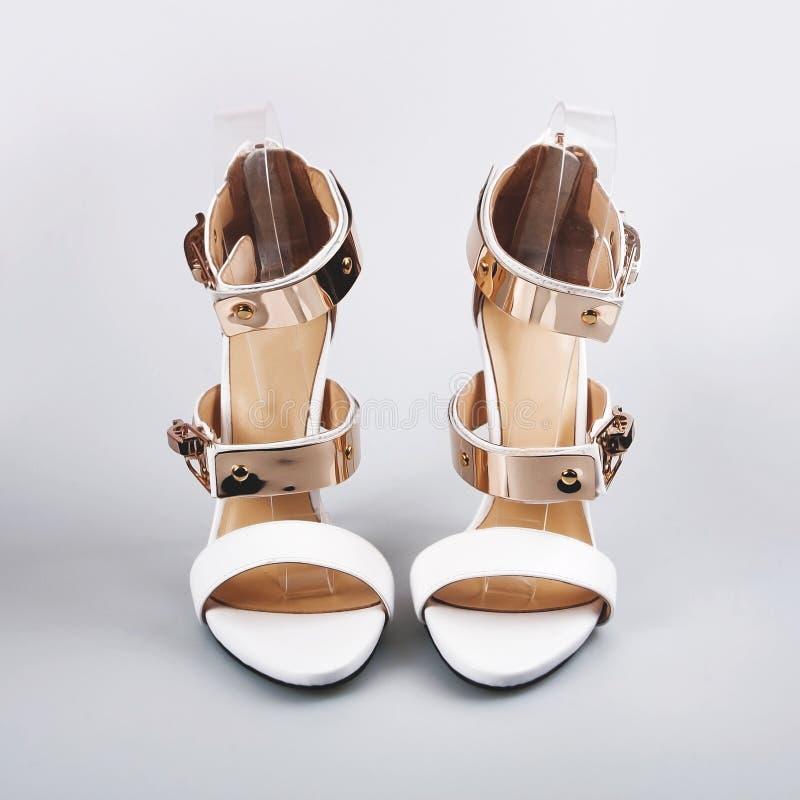 Chaussures d'isolement sur un fond blanc photos stock