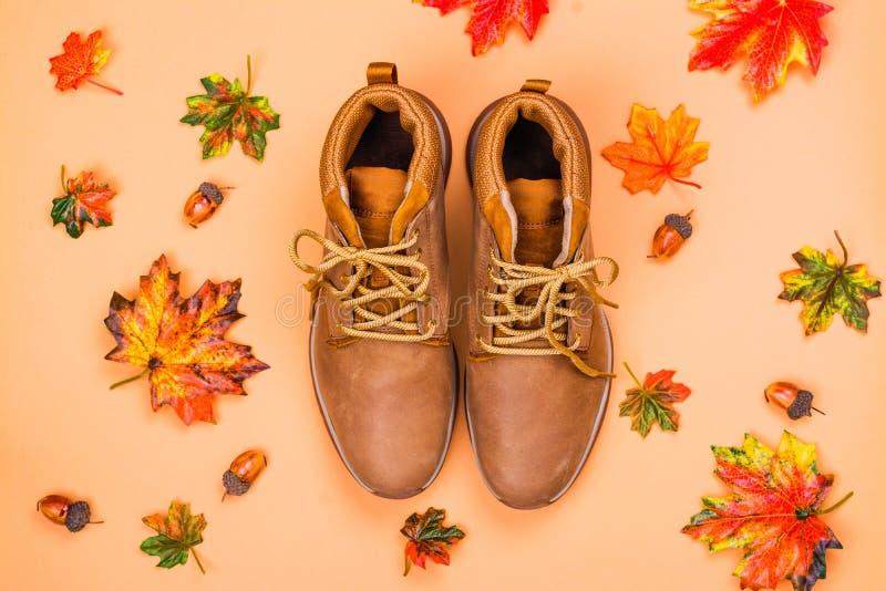 Chaussures de beige de femelles image libre de droits