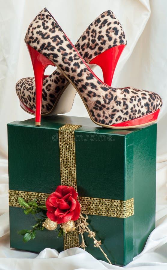 Chaussures de femme image libre de droits