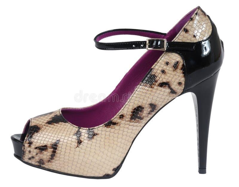 Chaussures de femmes photographie stock libre de droits