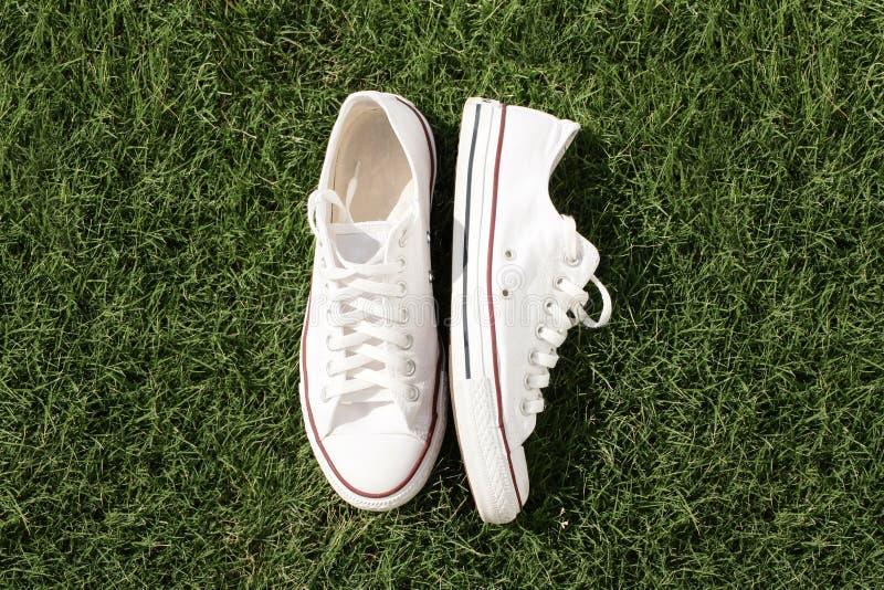 Chaussures de gémissement sur l'herbe verte photographie stock