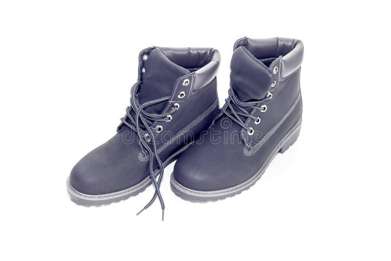 Chaussures de gris du ` s de femmes images libres de droits