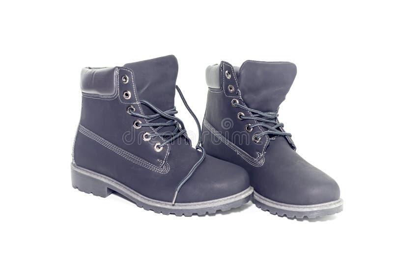 Chaussures de gris du ` s de femmes photographie stock libre de droits