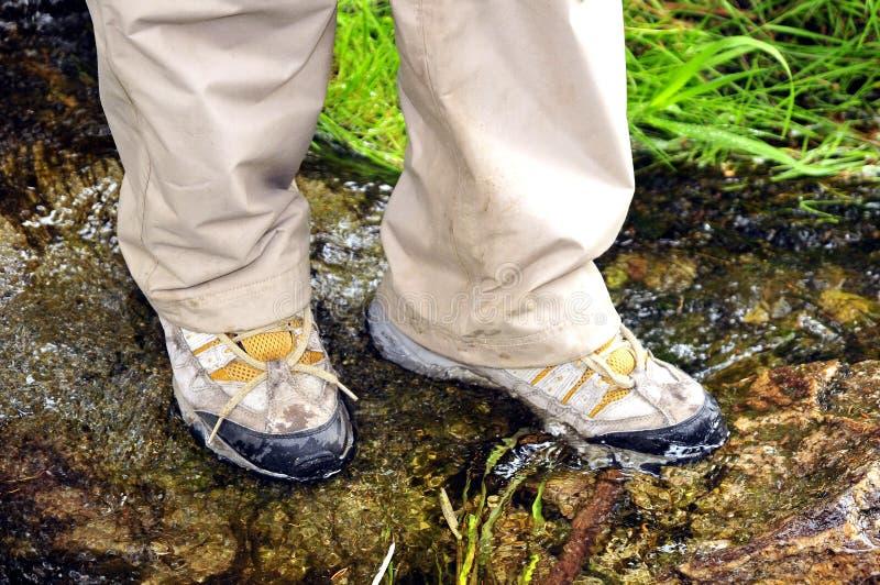 Chaussures de marche normales image stock