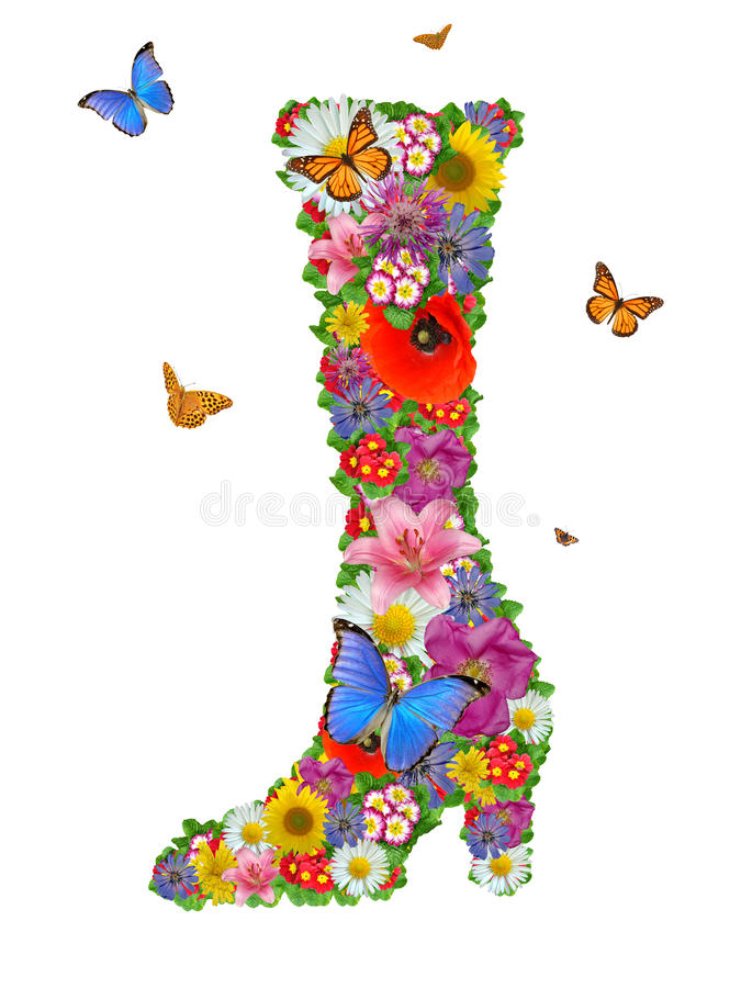 Chaussures des fleurs illustration stock