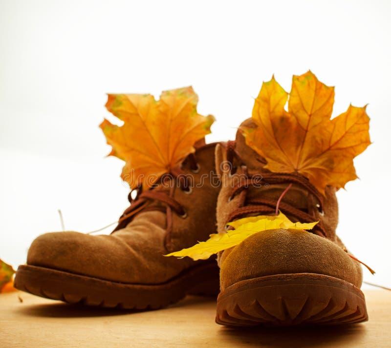 Chaussures et feuilles d'automne image stock