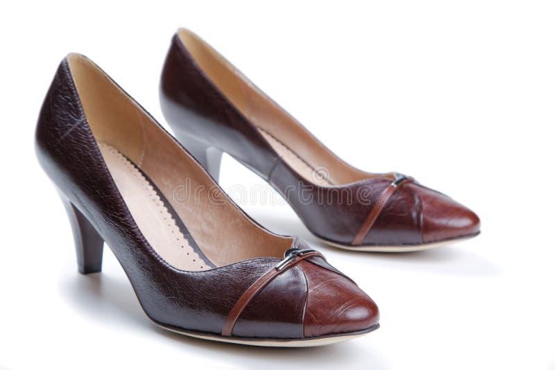 Chaussures femelles de Brown sur un blanc image stock