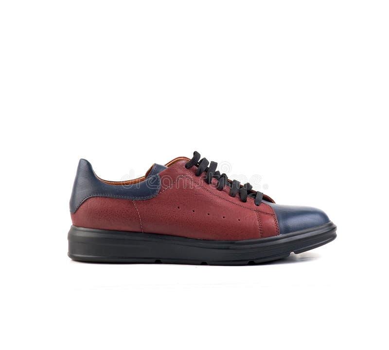 Chaussures mâle bleu-rouge avec lacet sur fond blanc image stock