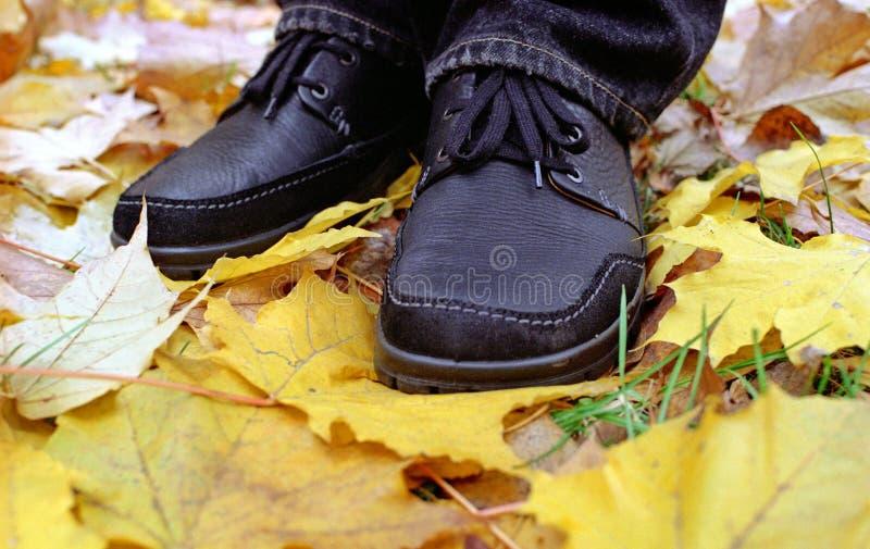 Chaussures noires sur les lames jaunes images libres de droits