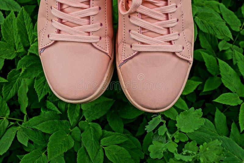 Chaussures roses de sport pour des femmes sur l'herbe verte et les feuilles dehors images libres de droits