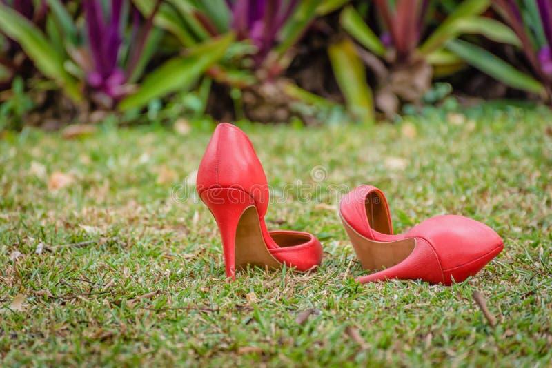 Chaussures rouges d'entrave dans le jardin vert photos libres de droits