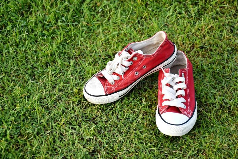 Chaussures rouges de sport images stock