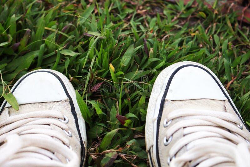 Chaussures sur l'herbe photo libre de droits