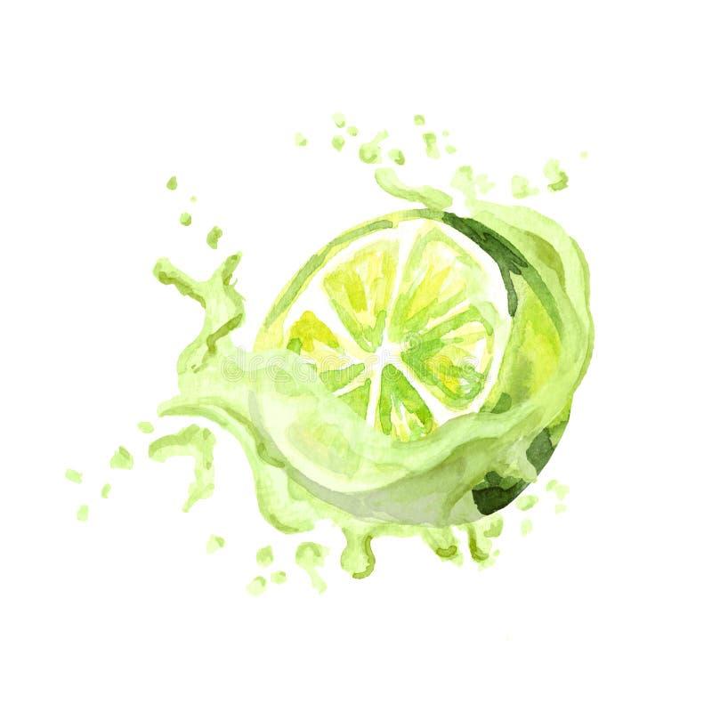 Chaux fraîche dans l'éclaboussure de jus d'isolement sur le fond blanc Illustration tirée par la main d'aquarelle illustration stock