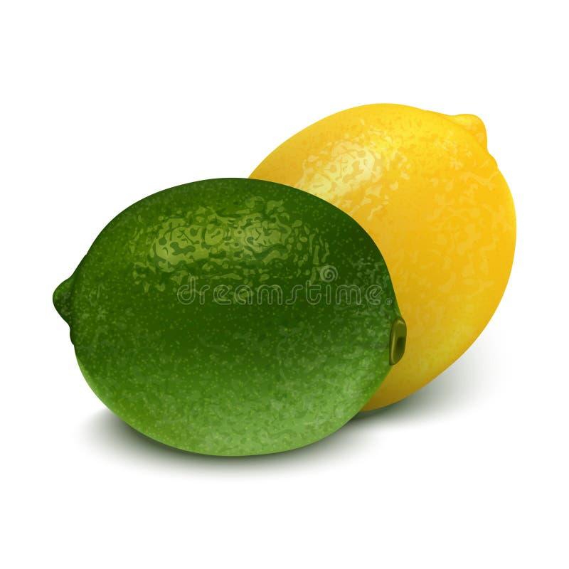 Chaux jaune verte réaliste, citron illustration du vecteur 3d illustration de vecteur