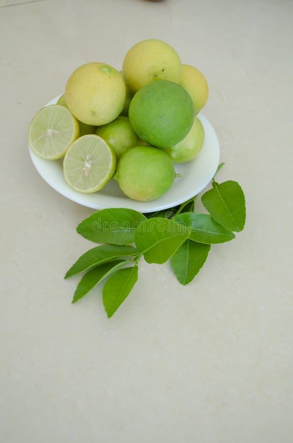 Chaux principales dans le petit plat blanc sur les feuilles vertes photo libre de droits