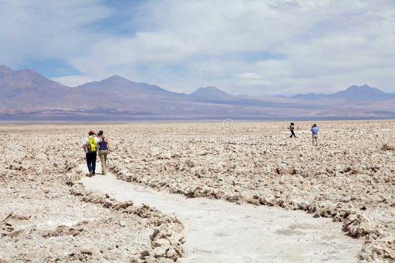 Chaxa Lagoon in the Salar de Atacama, Chile stock photo