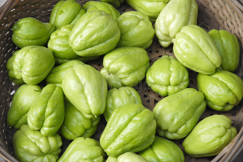 Chayote photo stock