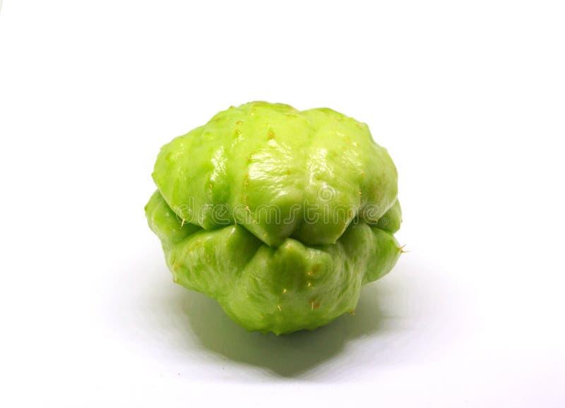 Chayotegrönsak som isoleras på vit Exotiskt foto för grönsakchayotestudio royaltyfria foton