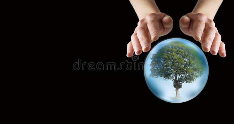 Che cosa fa la tenuta futura per i nostri alberi fotografia stock libera da diritti