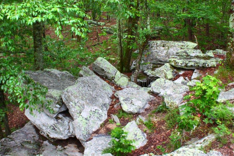 Cheaha State Park - Alabama royalty free stock photos