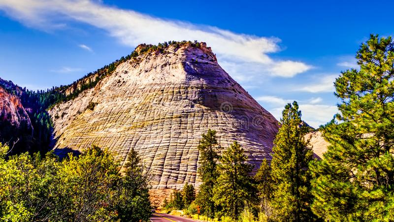 Checkerboard Mesa in Zion National Park, Utah, United States. Viewed from the Zion-Mount Carmel Highway royalty free stock photos
