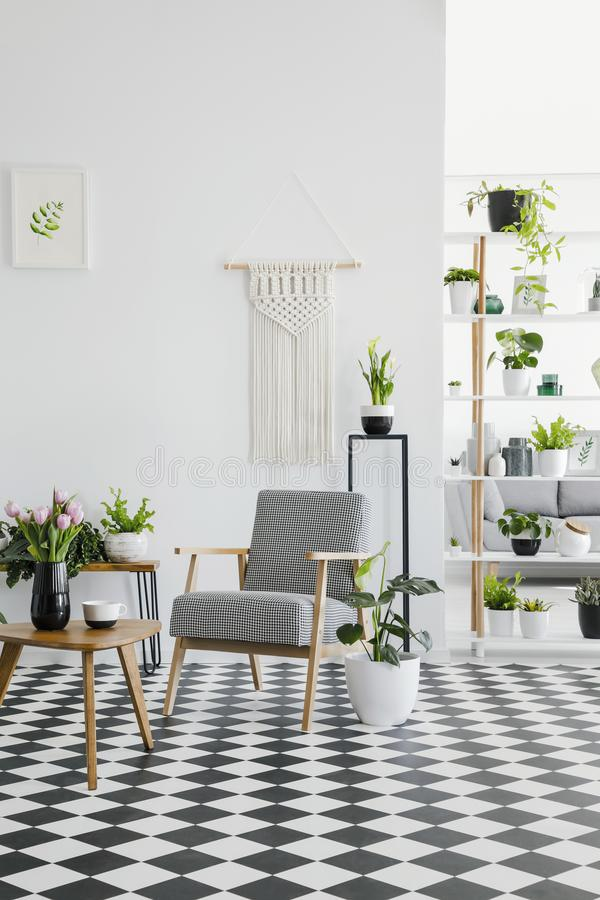Checkered floor in a retro living room interior with white walls, plants, armchair and coffee table. Real photo. Concept royalty free stock photo
