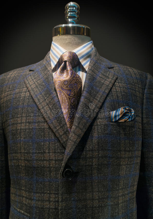 Download Checkered Jacket, Striped Shirt, Tie (Vertical) Stock Photo - Image of handkerchief, gray: 27307684