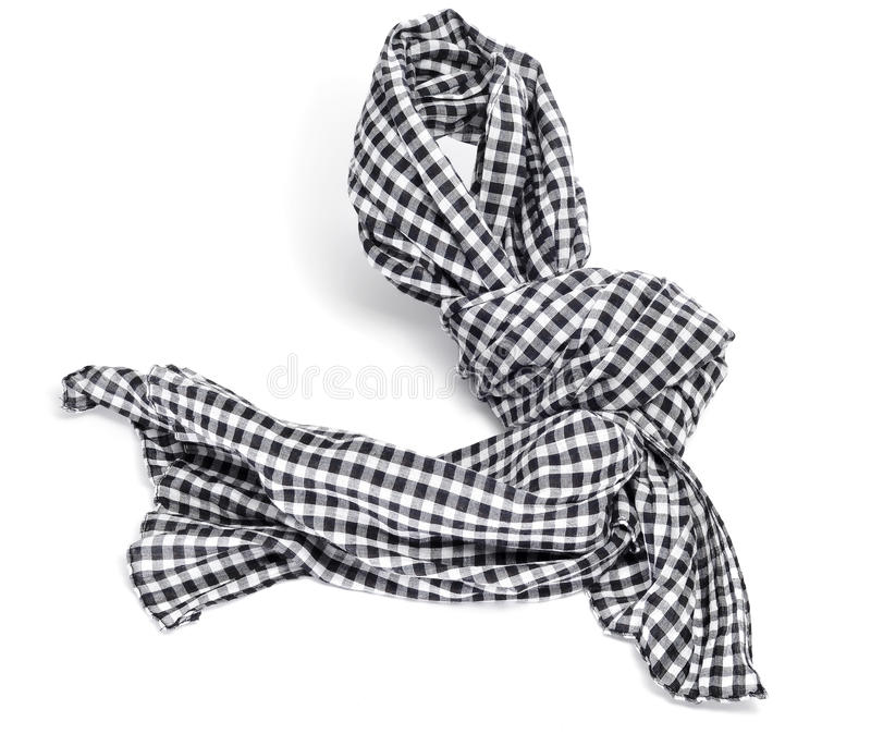 Download Checkered scarf stock image. Image of indoors, head, style - 21440253