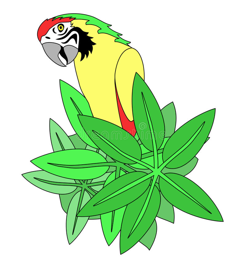 Cheeky vector parrot. Vector of a cheeky looking parrot with green leaves background stock illustration
