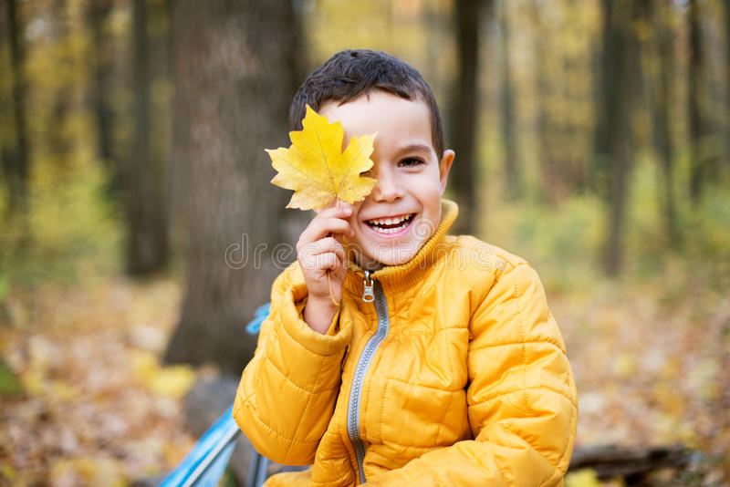 Cheerful boy smiling and hiding behind yellow leaf stock photography