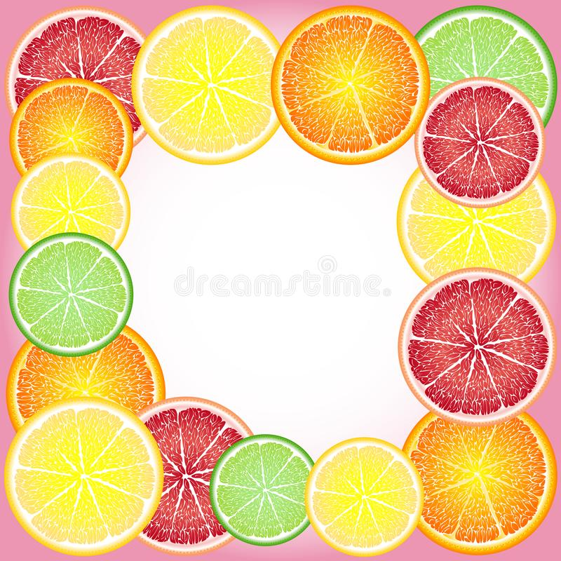 Cheerful, bright frame of circles of citrus fruits: orange, lemon, grapefruit, lime. Greeting card vector illustration