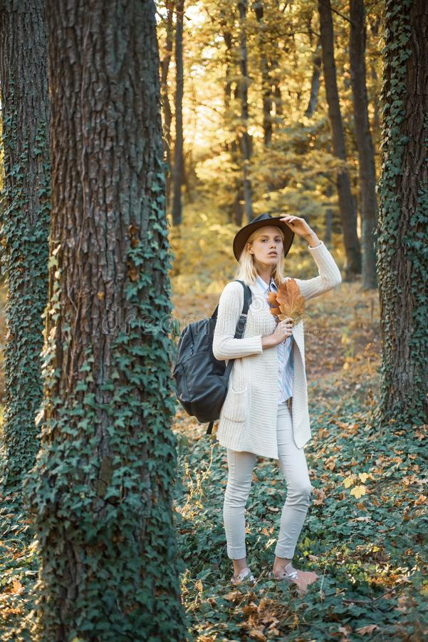 Cheerful carefree autumn woman in park on sunny day. Fall concept. Surprise autumn woman. Autumn girl preparing for stock photo