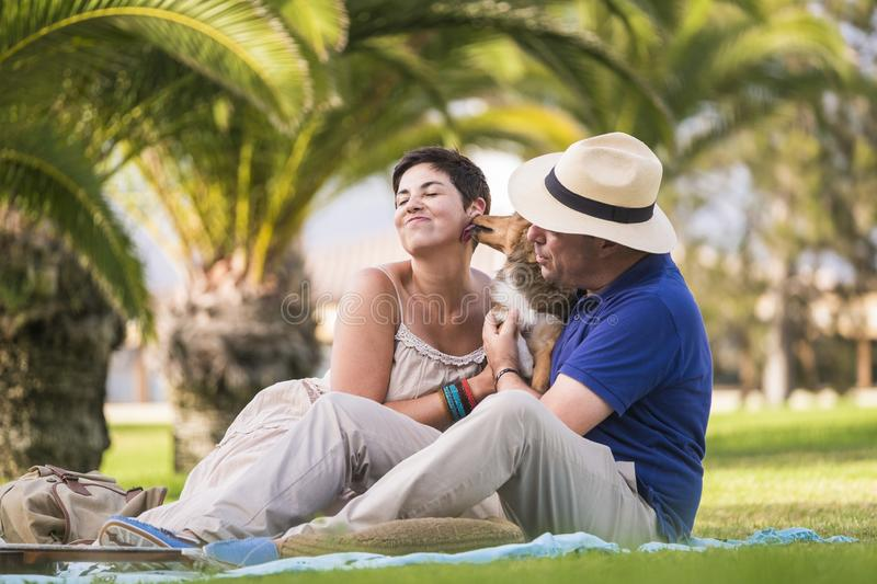 Cheerful caucasian couple enjoying outdoor leisure activity sitting on the green grass at city and play with young crazy dog stock photography
