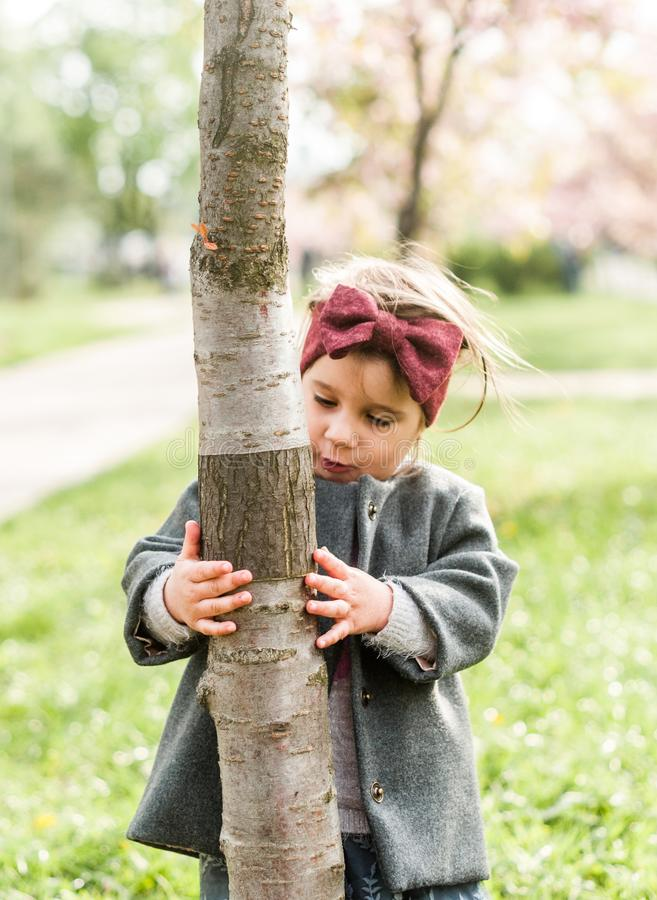Cheerful child girl examines insects on a tree trunk in the park stock photos
