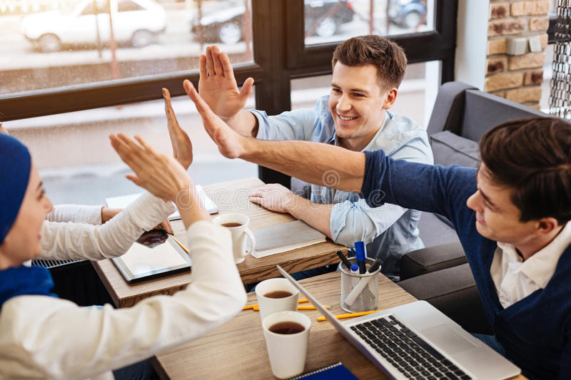 Cheerful colleagues celebrating success royalty free stock image