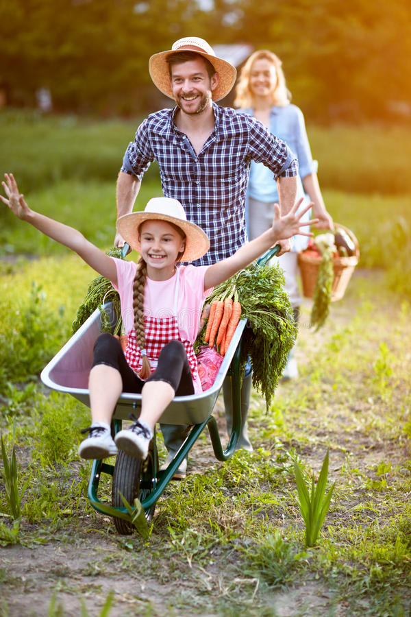 Cheerful daughter in wheelbarrow with father royalty free stock image